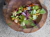 blenheim-farm-salad_2000x1500